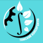 Консультационно-экспертная сессия от Томского консорциума